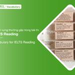 101 từ vựng thường gặp trong bài thi IELTS Reading